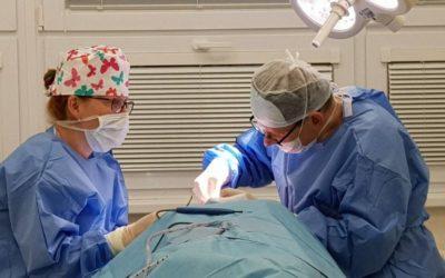 Zákroky v lokální anestezii